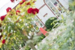 Auf modisch-botanischer Weltreise im Frankfurter Palmengarten