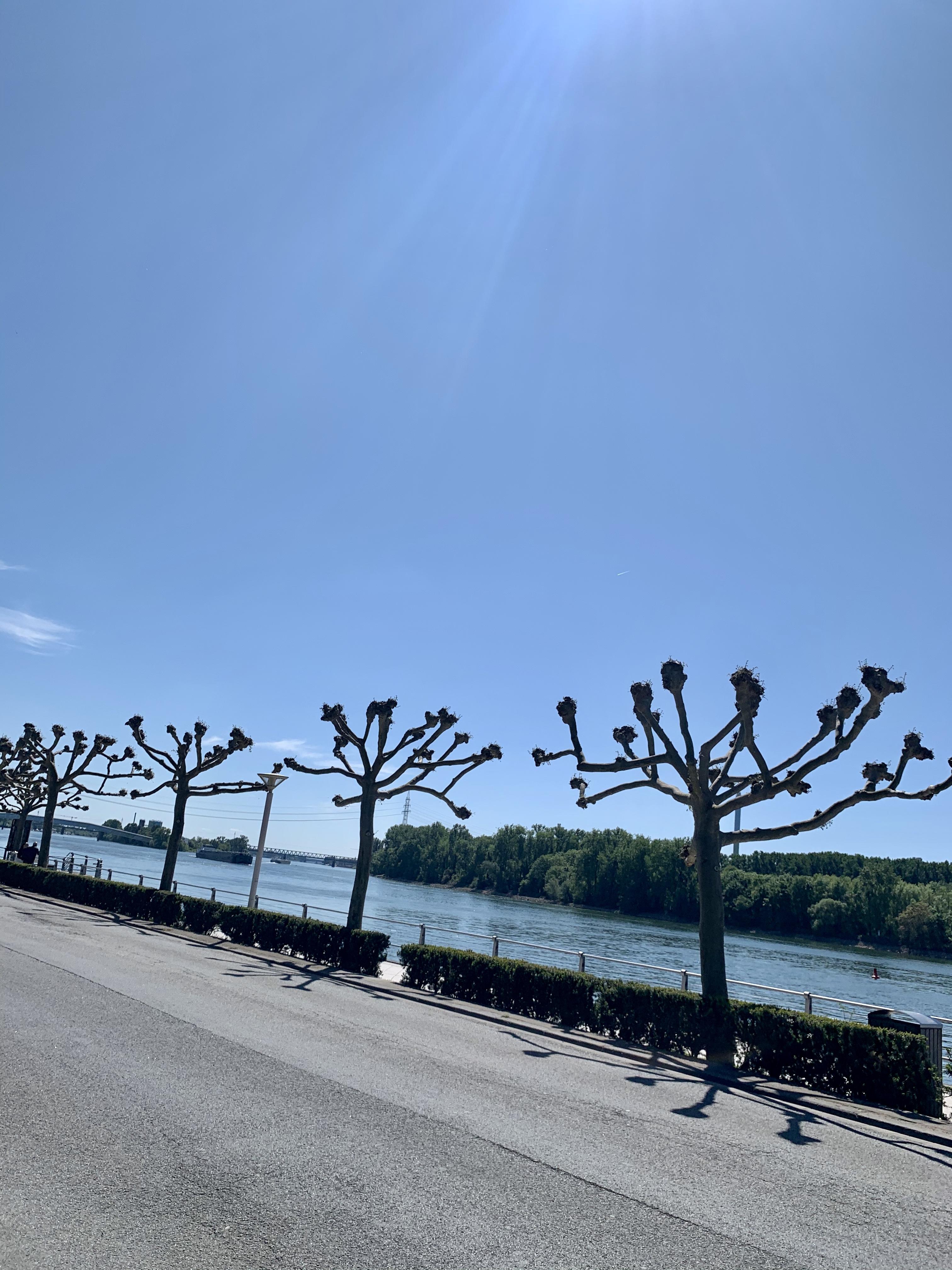 Wir reisen daheim: Meine Locationtipps für einen Kurzurlaub im Rhein-Main-Gebiet